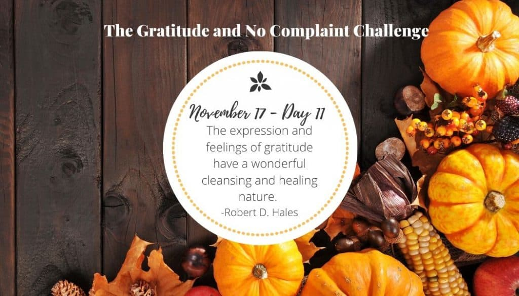 During the gratitude challenge, I witnessed the healing power of gratitude.