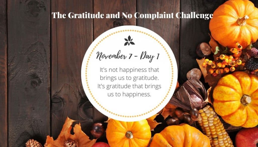 From this gratitude challenge I have learned that gratitude does bring happiness.