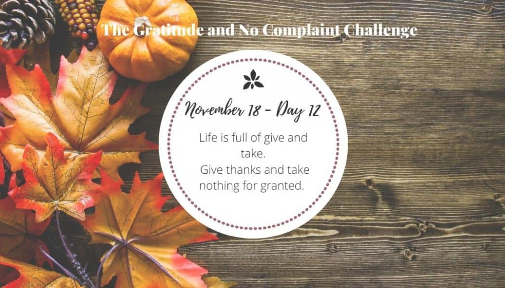 The gratitude challenge made it much harder to take things for granted.