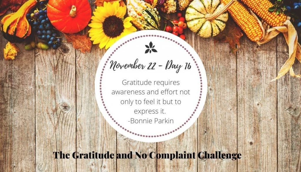 During the gratitude challenge, I tried to express my gratitude for others more often.