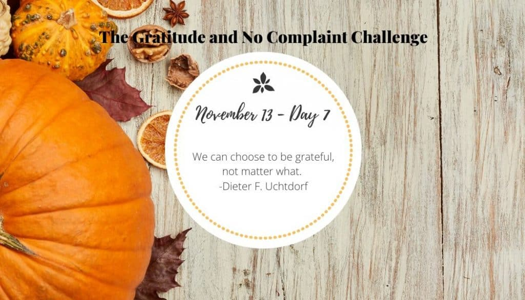 This gratitude challenge has taught me that there is always something to be grateful for.