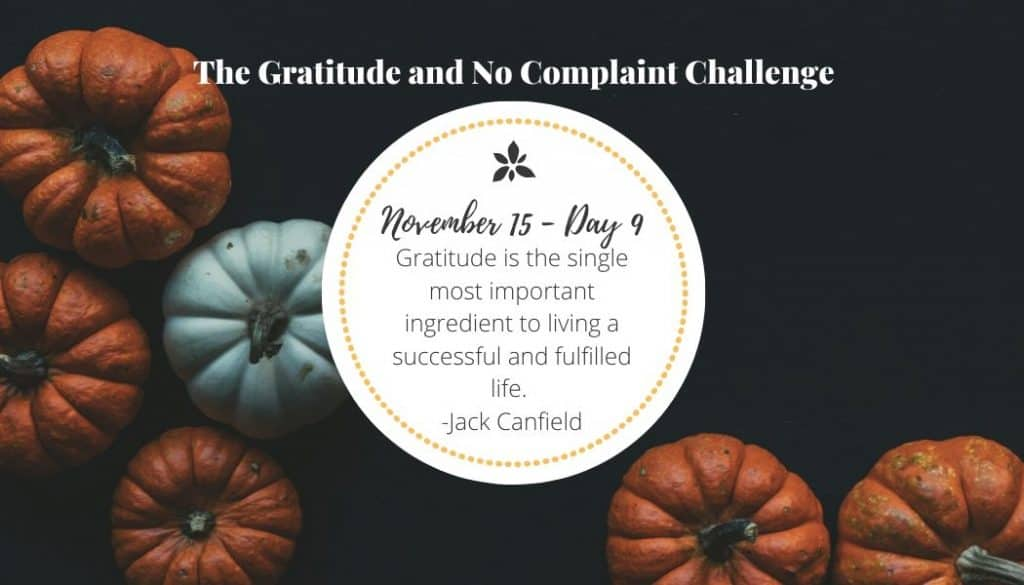 Gratitude is essential to our happiness.