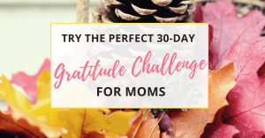 try the 30 day gratitude challenge for moms